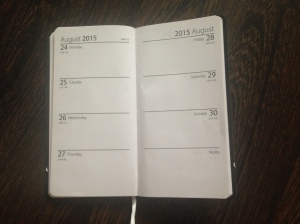 Picture of diary pages