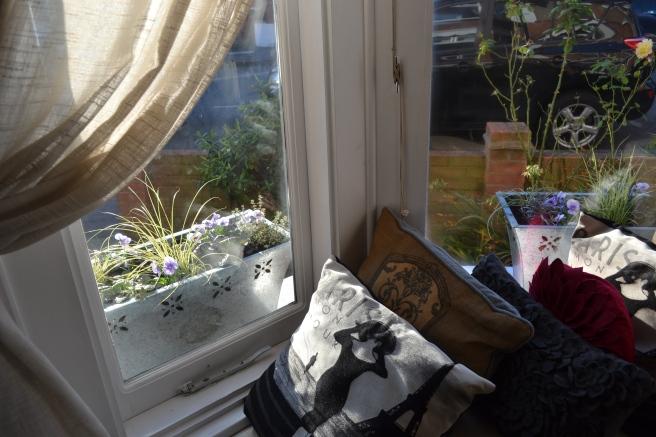 Window Boxes. Bay window.
